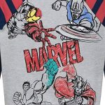 sweat marvel TOP 13 image 1 produit